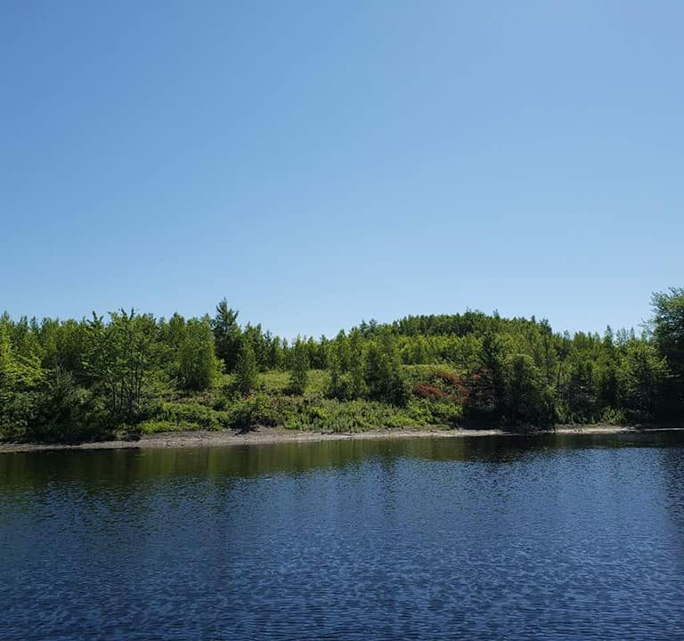 Private Waterfront Lots For Sale Lake Head Estates