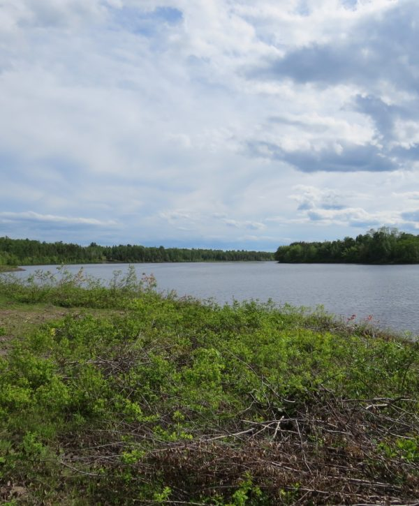 Grand_Lake_Water_front_property_for_sale_New_Brunswick