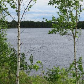 NB_Lake_property_for_sale